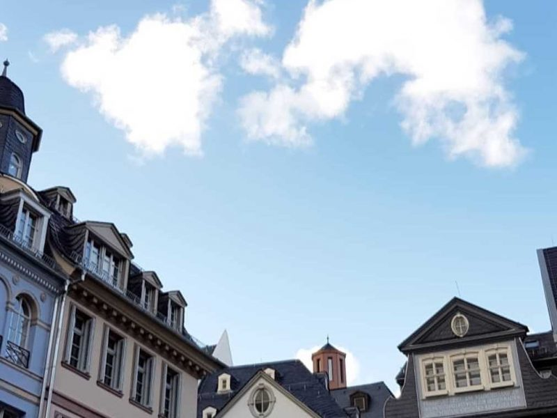 Wolf Rechtsanwälte Koblenz Berlin Bundesgerichtshof BGH Urteil vom 24.01.2019 I ZR 16017 Provisionsanspruch des Maklers